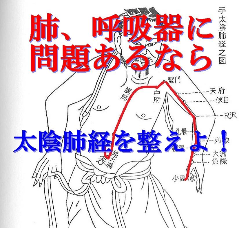 自分自身で12経絡を整える方法④太陰肺経