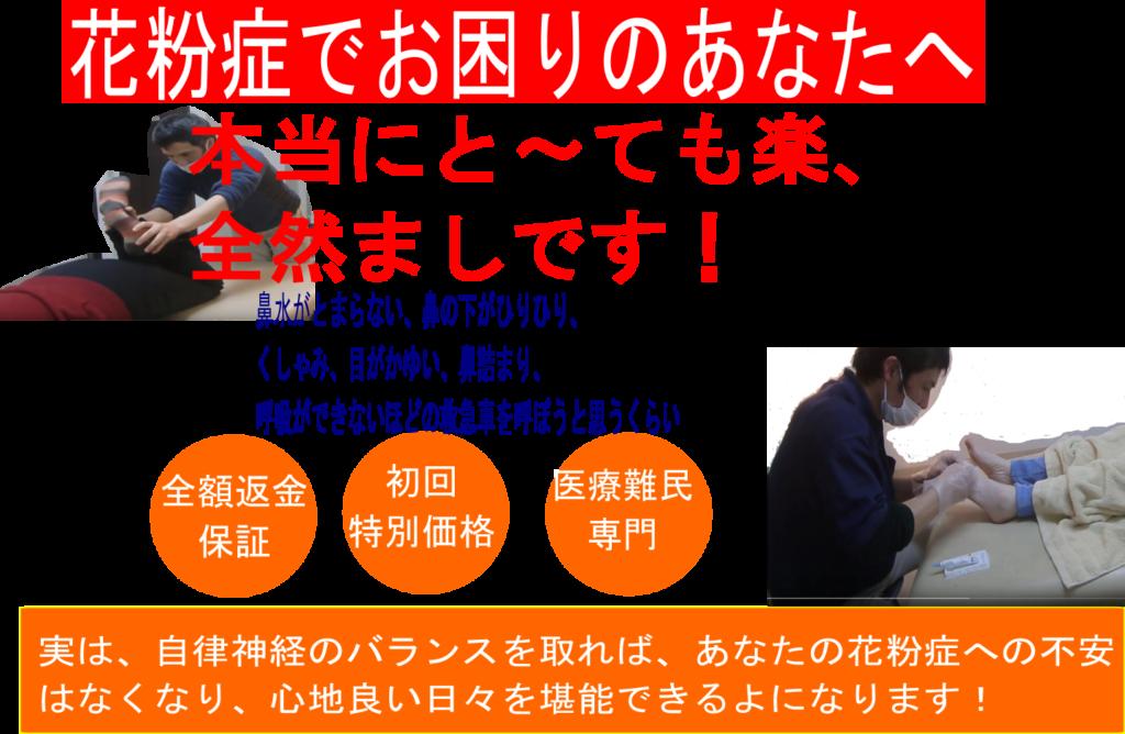 尼崎で花粉症でお困りのあなたへ、花粉症ウエルカム整体であなたの希望に答えます。